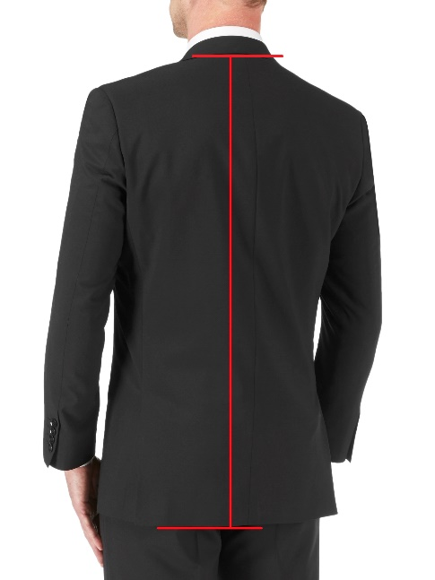 Regular Fit Suit Jackets / Blazers (back)